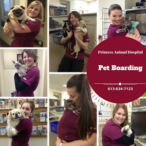 Pet Boarding at Princess AH - Ask us about the BENEFITS!!!