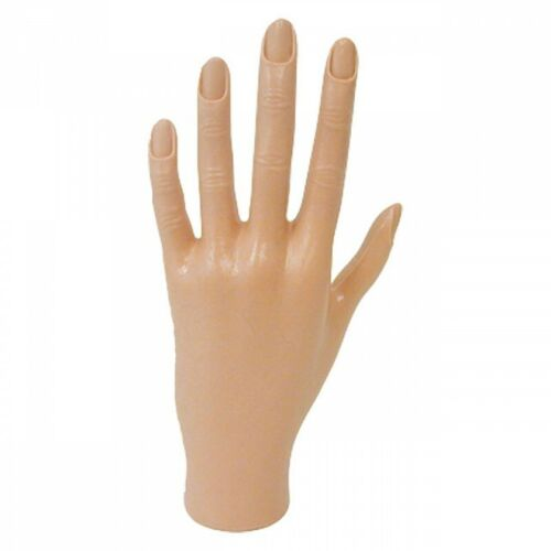 Manicure Practice Hand with Cuticled Fingers by DL Professional