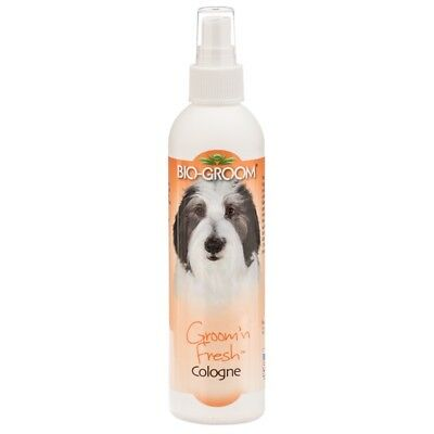 Bio-Groom Groom N Fresh 8 oz | Aromatic Cologne for Dogs and - Bio Cat