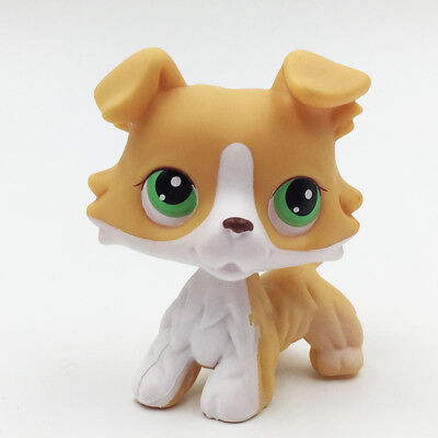 LPS Toys Littlest Pet Shop Yellow Collie Dog Puppy #272 Green Eyes Action Figure