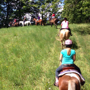 Horse Riding Camp - Overnight & Day Summer Camps!