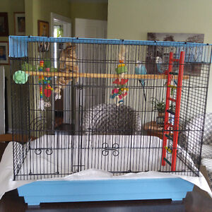Free parakeet cage and parakeets