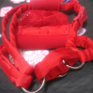 Red dog harness