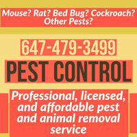 LICENSED PEST CONTROL MOUSE, RAT, ROACH, BED BUG, ANT REMOVAL