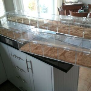 Acrylic display cases for reptiles etc.