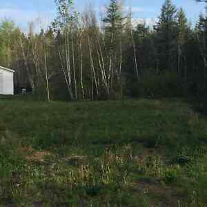 Beautiful 39 acres of trees with lots of potential!!