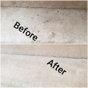 Carpet cleaning . Sofa cleaning