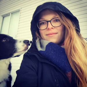 Experienced dog sitter, w/ references and neg. prices.