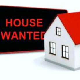 🏠🏚️ WE BUY HOUSES! 🏚️🏠