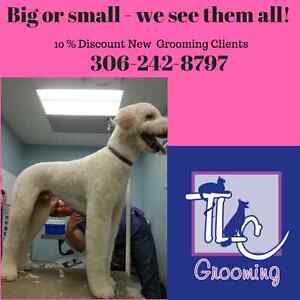 TLC Grooming: It's all in the name!