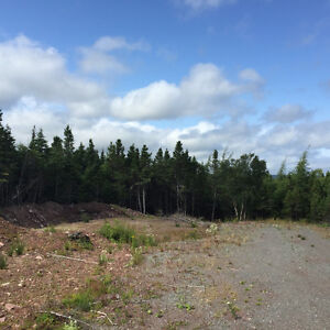 1 Acre Cleared Waterfront Lot in Bellevue