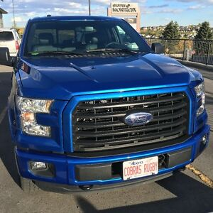 2015 Ford F-150 XLT FX4 package