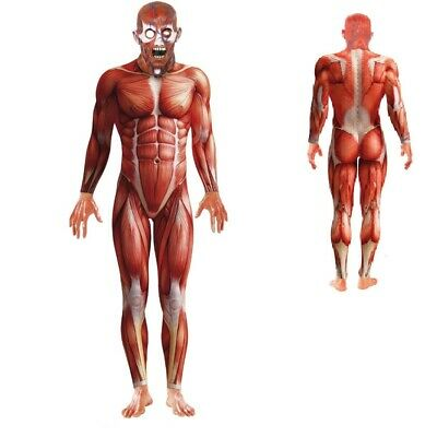 Men's Anatomy Halloween Costume (Anatomy Man Men's Costume)