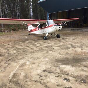 Aeronca Champion 7EC Saguenay Saguenay-Lac-Saint-Jean image 2