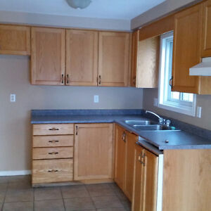 Bright and Spacious 3 Bedroom house for rent Kitchener / Waterloo Kitchener Area image 1