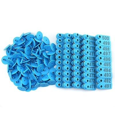 Goat Sheep Pig 401-500 Number Plastic Livestock Ear Tag With Blue Color