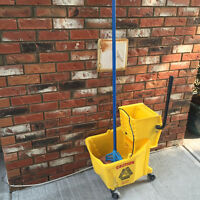 Commercial mop bucket with mop