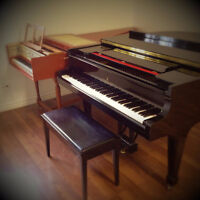 Piano Lessons with qualified teacher