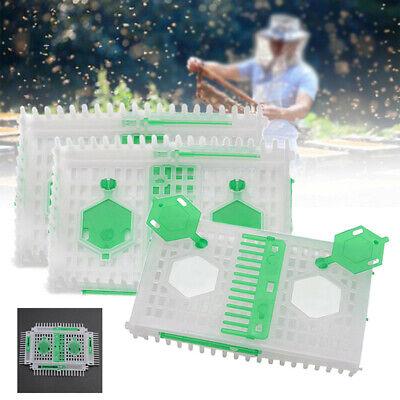 1pcs Plastic Queen Bee Needle Cage Trap Beekeeper Equipment Catcher Tools Part