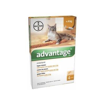 ADVANTAGE 40 x 4 pipettes  Ticks and flea treatment Cat - 4 kg antiparasitaire