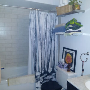 Condo for rent/sublet