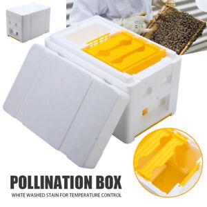 Auto Honey Beehive Frames Beekeeping Kit Bee Hive King Box Pollination Box