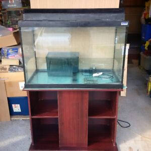 65 gallon aquarium with light and stand