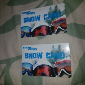 $100 SnowValley Snow cards