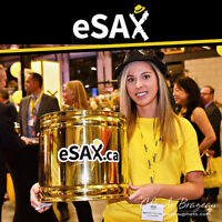 Grow Your Small Business By Attending The Huge eSAX Networking E
