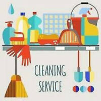 Professional, Reliable & Affordable Cleaners
