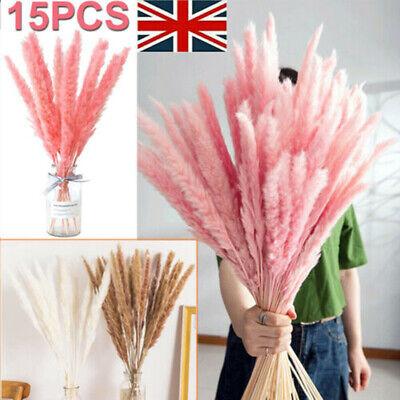 Home Decoration - 15PCS Dried Pampas Grass Reed Bundle Bouquet Flower Bunch Wedding Home Decor UK
