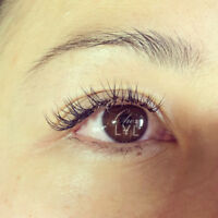 PROMOTION 50% off eyelash extensions