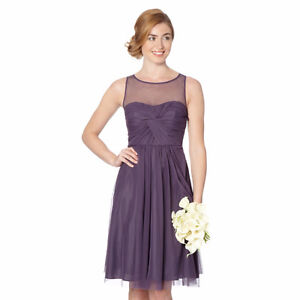 Debut Mauve Mesh Prom/Special Occasion dress