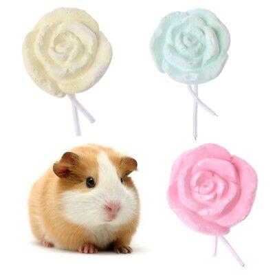 Rabbit Pet Hamster Chinchilla Bird Teeth Grinding Stone Rose Shape Chew Toy
