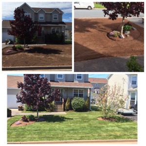 HIGH quality & Affordable Landscaping and Concrete work!