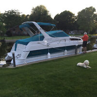 Immaculate - Pristine Condition! Beautiful Cruiser