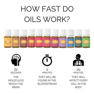 Young Living Essential Oils London Ontario image 5