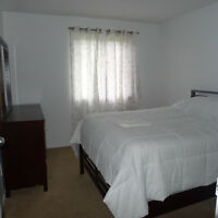 Furnished, Beautiful, Spacious Condo; Close to Everything