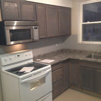 beautiful 2 bedroom apartment in the heart of Oshawa