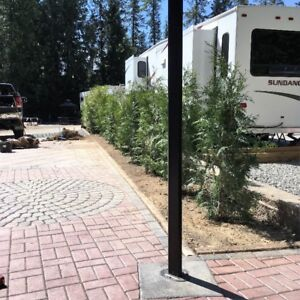 RV Lot and RV
