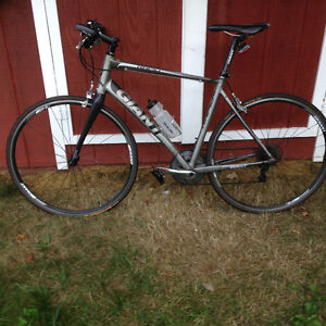 Giant Rapid 1 for sale