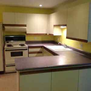 Used Kitchen Cabinets, fridge and stove