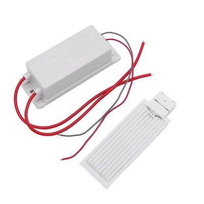 110V AC 10g/h Supply Plate Ceramic Ozone Generator Air Purifier Kit New