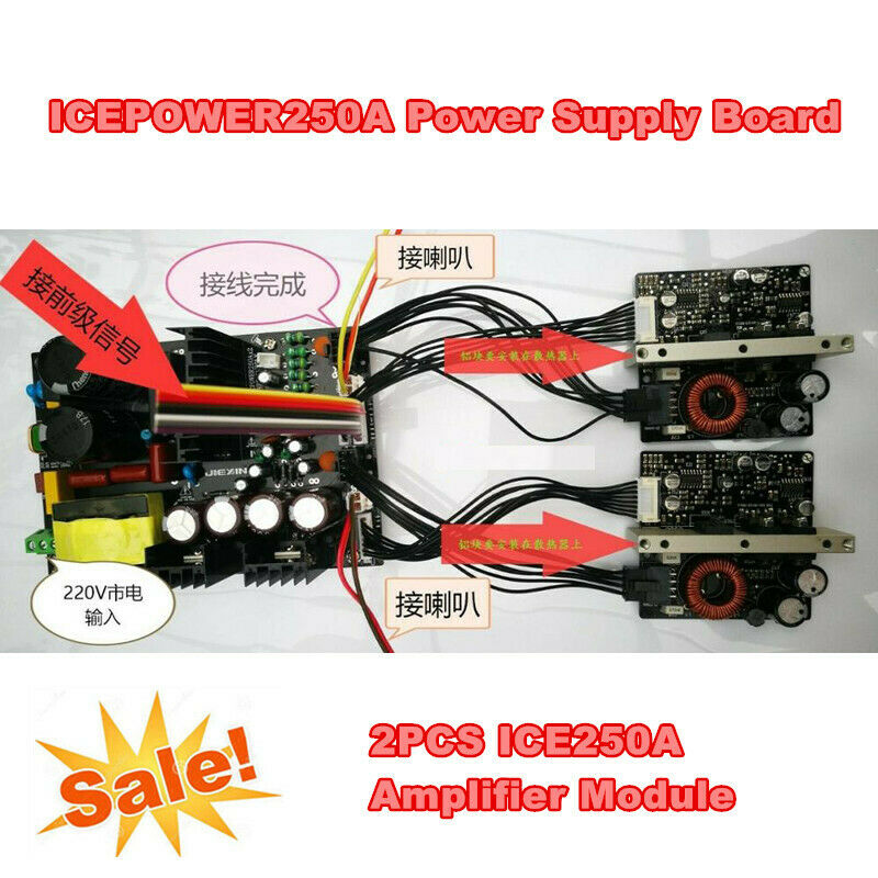 45V 600W ICEPOWER250A Power Supply Board+ 2PCS ICE250A Amplifier Module + Cables