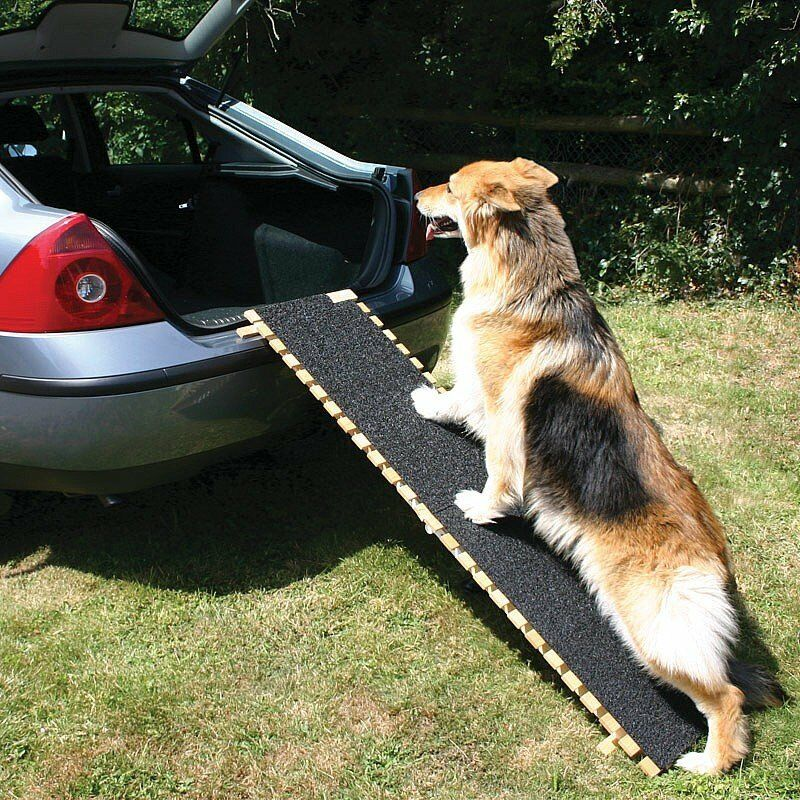 Coopers Folding Dog Ramp