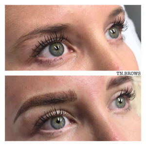 Microblading & Ombre Shading $250