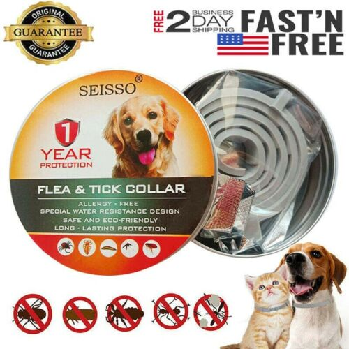 DEWEL Seisso Flea And Tick Control Collar for Medium Large D