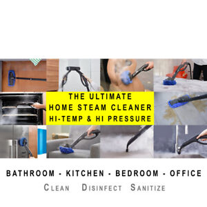 Professional Steam Cleaner for Rent