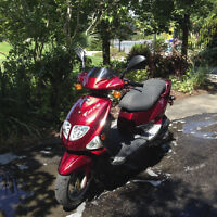 2005 PGO TRex 50cc Scooter/Moped
