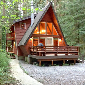 Mt. Baker Lodging - Cabin #15 - HOT TUB, FIREPLACE, WIFI, SLP-4!